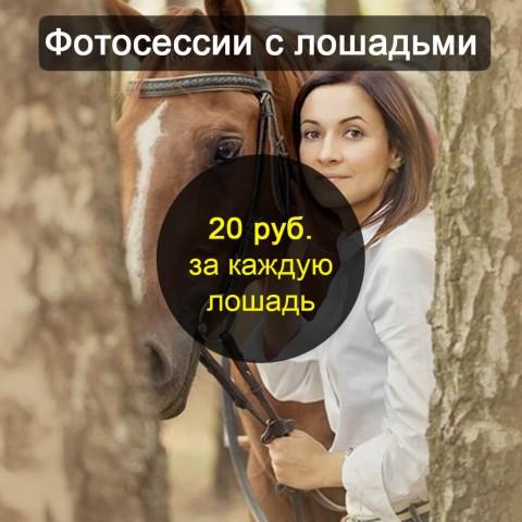 Цена на фотосессию с лошадьми в Бресте