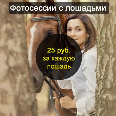 Фотосессии с лошадьми в Бресте цена