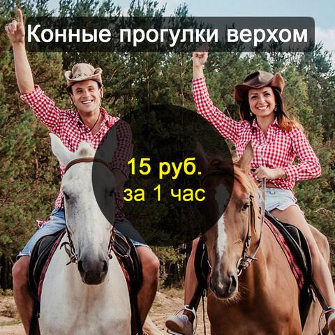 verhom-price4