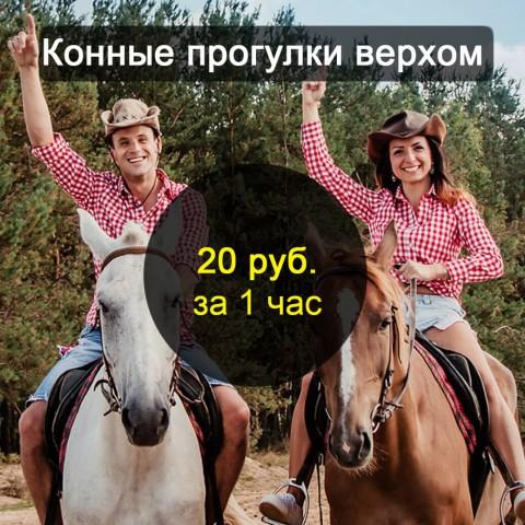 Прогулки верхом на лошадях - цена в Бресте