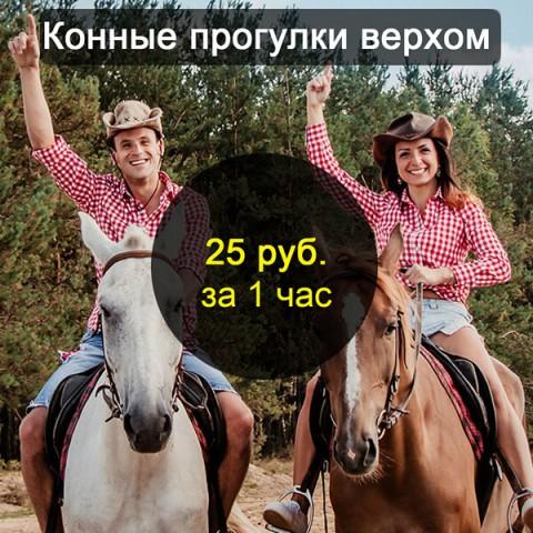 Конные прогулки верхом на лошадях в Бресте