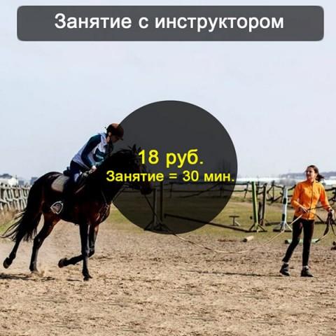 Конная езда занятия с инструктором Брест